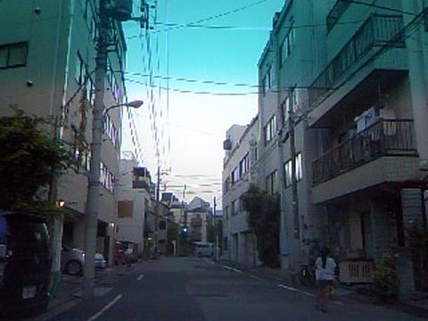 撮影者:関東の内科医師